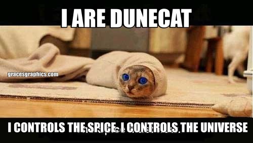 I ARE DUNECAT I CONTROLS THE SPICE. I CONTROLS THE UNIVERSE