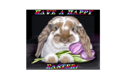 have a happy easter