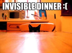 invisible dinner