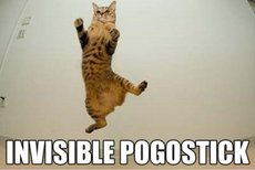 invisible pogo stick