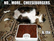 no more cheeseburgers