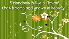 friendship is like a flower that blooms and grows in beauty