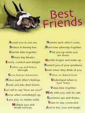 best friends friendship quotes
