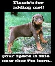 thanks for adding me dog your space is safe now that i'm here