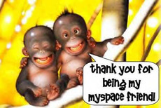 than you for being my myspace friend baby monkies