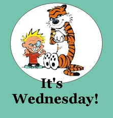 it's wednesday calvin and hobbes