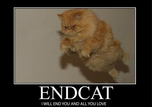 endcat i will end you and all you love
