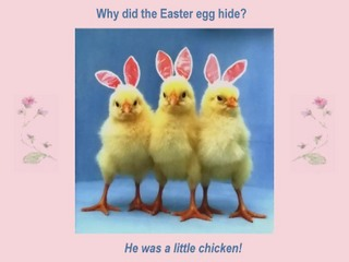 why did the easter egg hide he was a little chicken