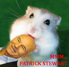 mouse licks patrick stewart