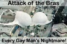 attack of the bras every gay man's nightmare