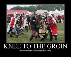 knee to the groin