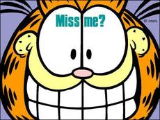 miss me? garfield