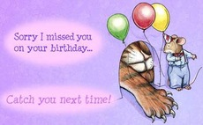sorry i miss you on your birthday cat mouse