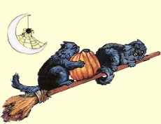 cats flying broomstick
