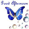 Search good afternoon
